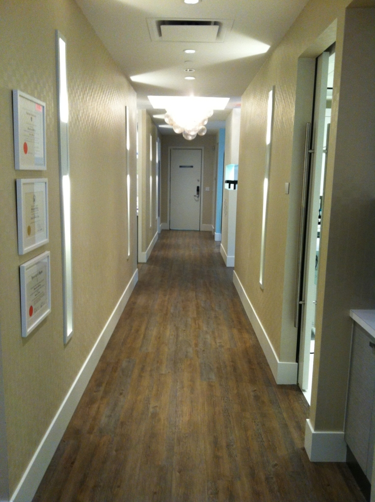 Project Skin MD Vancouver - Vinyl Plank Flooring by Harbinger