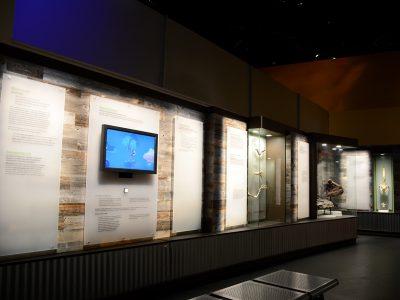 royal tyrell museum, drumheller alberta