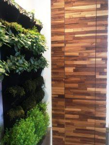 The-Eco-Floor-Store-Finium-FriendlyWall-Wall-Surface-Qoola-Kelowna-BC
