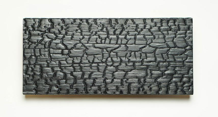 charred-wood-siding